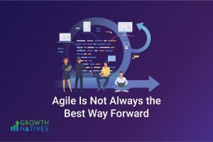 Agile Methodology – Not Always Best